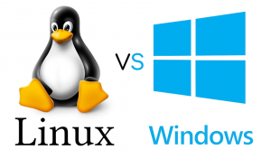 Diferenças Alojamento Web Linux vs Windows